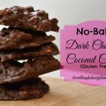 No-Bake Dark Chocolate Coconut Cookies (Gluten Free!)