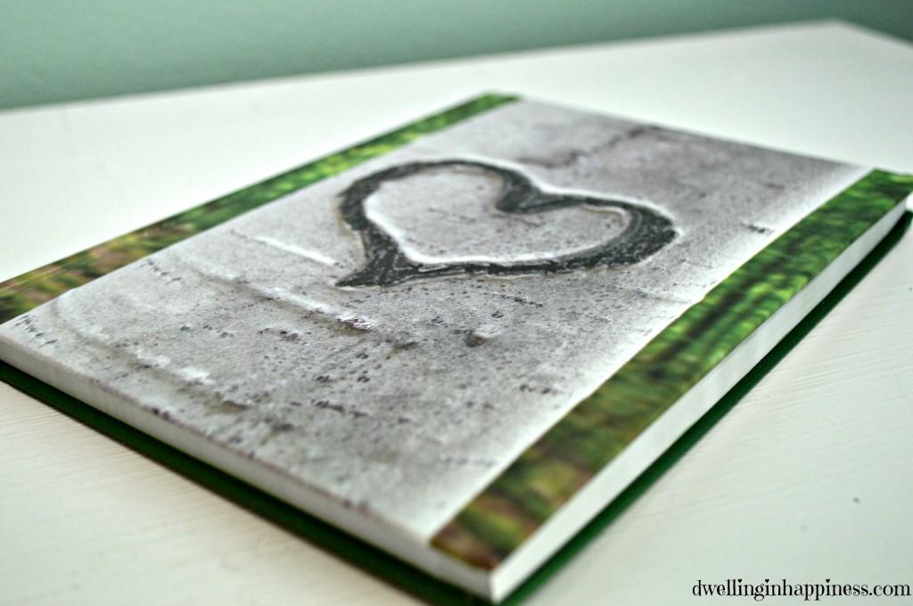 David's journal 1