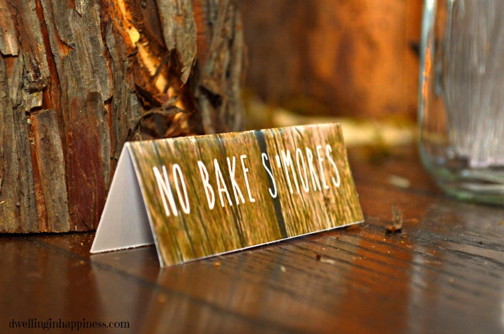 No bake smores closeup