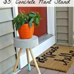 $5 DIY Concrete Plant Stand