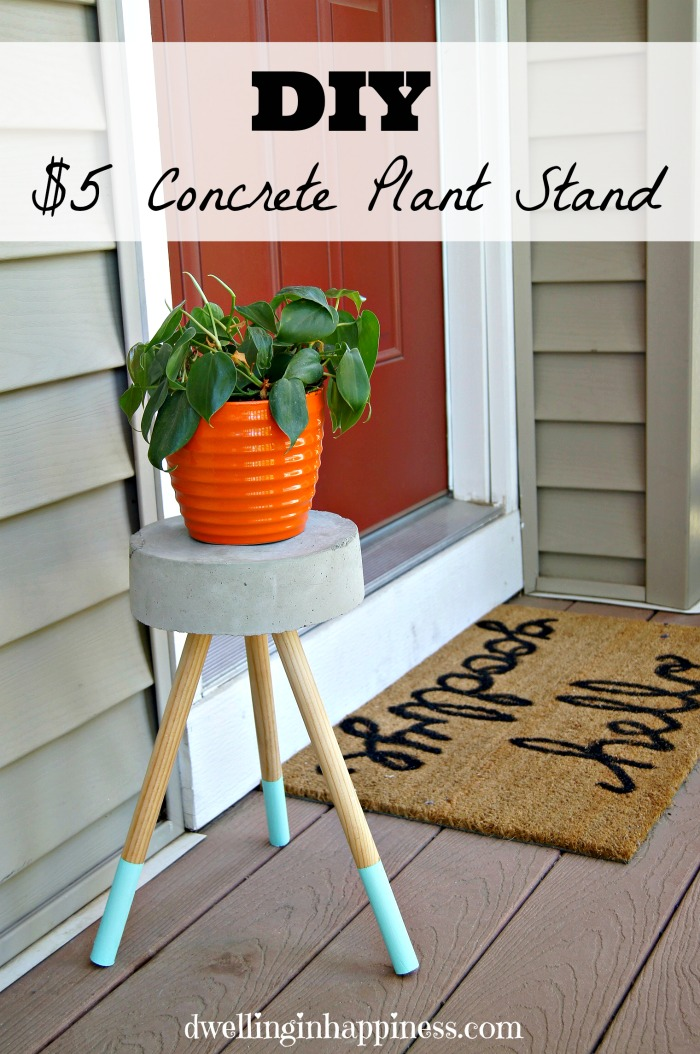 5 Diy Concrete Plant Stand Dwelling In Happiness