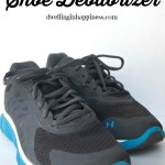 All-Natural Shoe Deodorizer