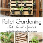 How To: Pallet Gardening for Small Spaces