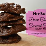No-Bake Dark Chocolate Coconut Cookies (Gluten Free!)