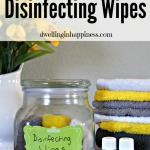 Non-Toxic & Reusable Disinfecting Wipes
