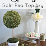 Spring Split Pea Topiary