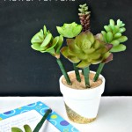 Succulent Flower Pot Pens